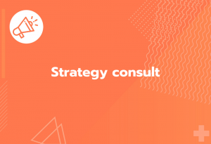 strategy consult